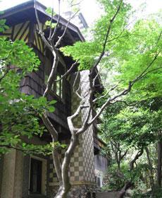 photo_20080710_04