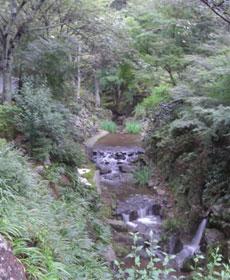 photo_20080727_04