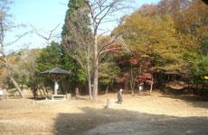 photo_20081117_01