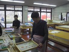 photo_20101126_06
