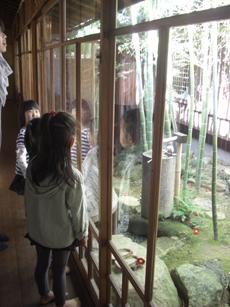 photo_20121019_06