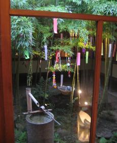 中庭の笹にも七夕飾り☆